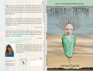 """Passage"" by Amy Guidry on the cover of ""Startle Pattern"" by Larissa Szporluk"